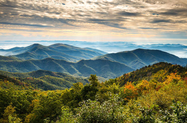 Blue Ridge Parkway Wall Art - Photograph - Blue Ridge Parkway Sunrise - Light Lines And Leaves by Dave Allen