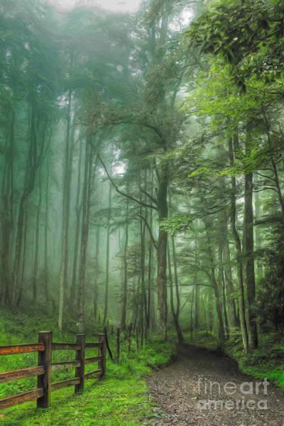Wall Art - Painting - Blue Ridge - Trees In Fog Country Road II by Dan Carmichael