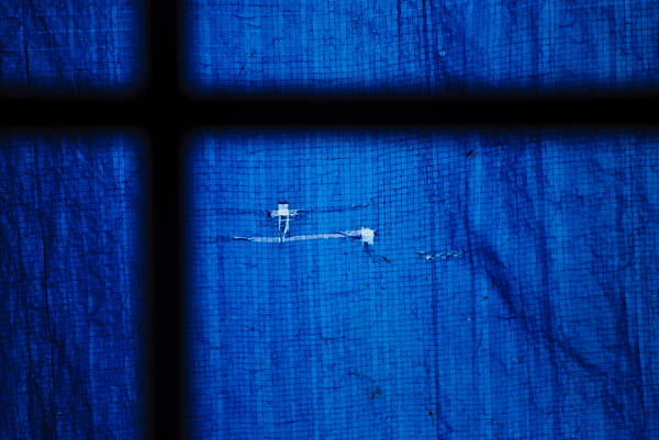 Photograph - Blue Shade by Christi Kraft