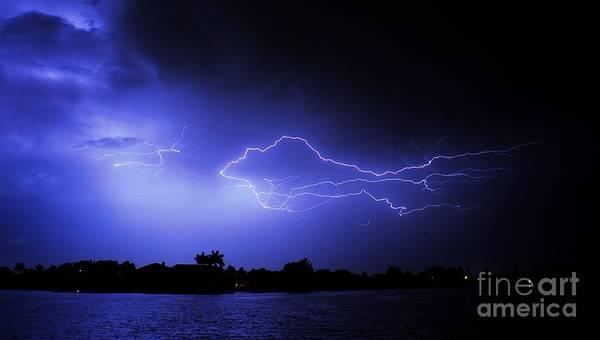Electric Storm Photograph - Blue Shark by Quinn Sedam