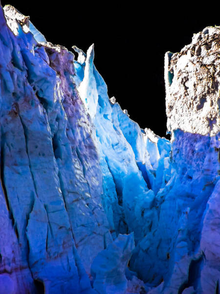 Wall Art - Photograph - Blue Shivers by Karen Wiles
