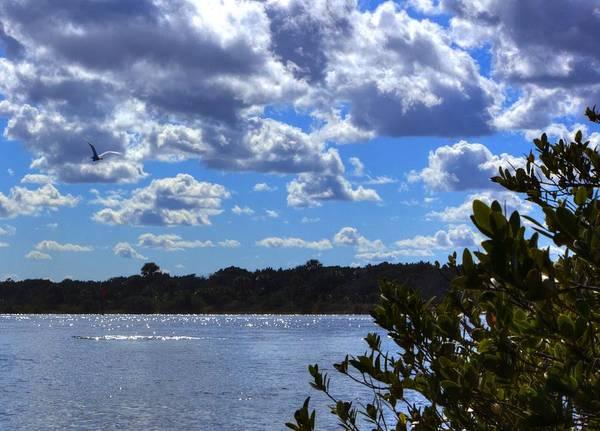 Photograph - Blue Sky by Tyson Kinnison