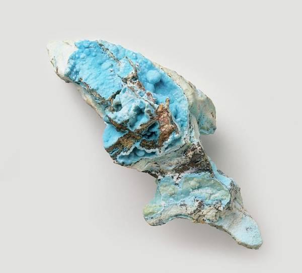 Carbonate Photograph - Blue Smithsonite In Groundmass by Dorling Kindersley/uig