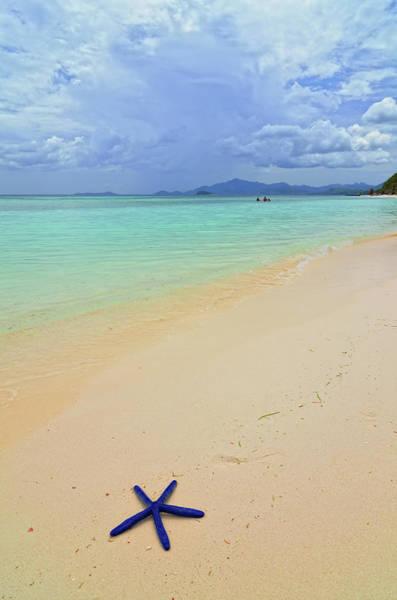 Philippines Photograph - Blue Starfish by Joyoyo Chen