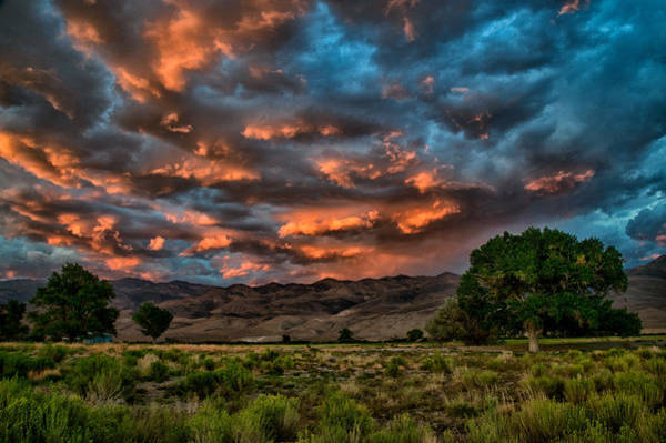 Sierra Nevada Mountains Photograph - Blue Sunset by Cat Connor