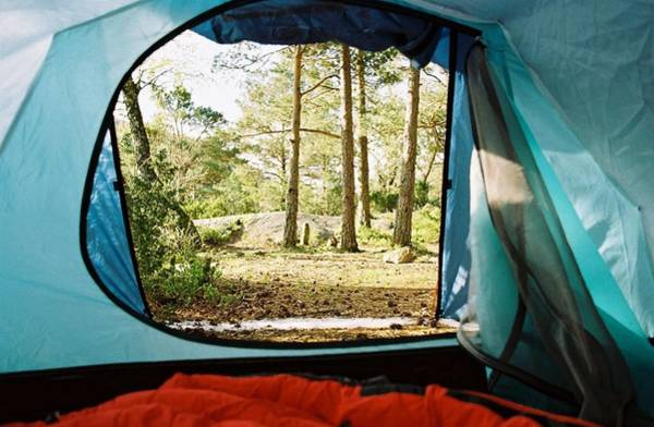 Tent Photograph - Blue Tent In Forest by Torfinn