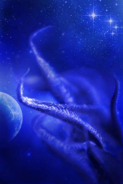 Wall Art - Photograph - Blue Tentacles by David and Carol Kelly