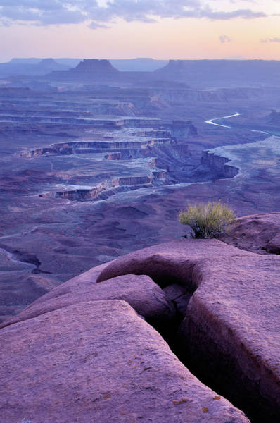 Photograph - Blue Twilight Landscape In Canyonlands by Rezus