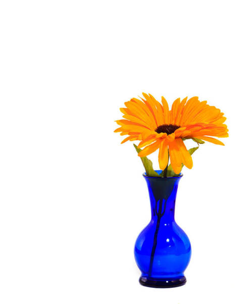 Wall Art - Photograph - Blue Vase by Cecil Fuselier