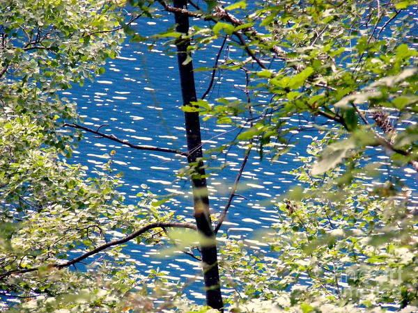 Pinyin Photograph - Blue Water by Noa Yerushalmi