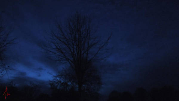 Photograph - Blue Winter Night Denmark  by Colette V Hera  Guggenheim