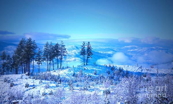 Photograph - Blue Winter by Tara Turner