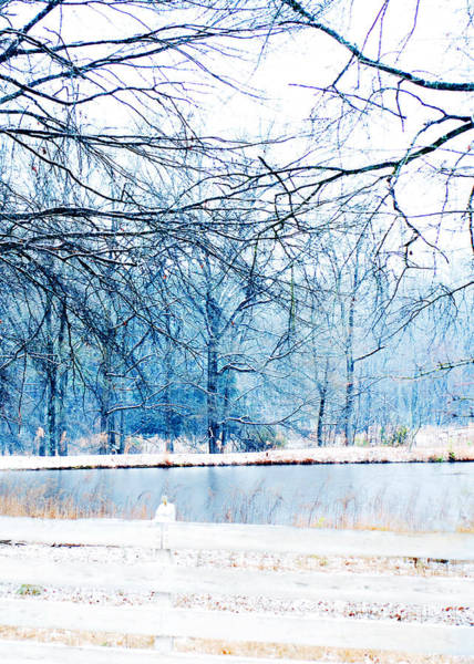 Photograph - Blue Winter by Val Stone Creager