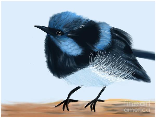 Painting - Blue Wren Beauty by Barefoot Bodeez Art