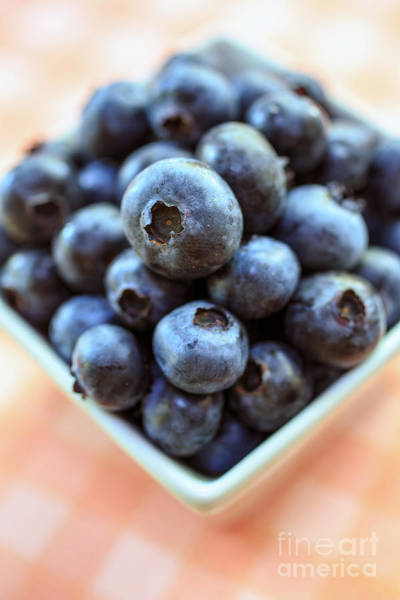 Pick Photograph - Blueberries Closeup by Edward Fielding