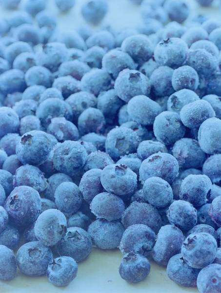 Blue Photograph - Blueberries by Romulo Yanes