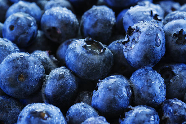 Blue Berry Photograph - Blueberries by Vishwanath Bhat