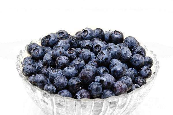 Photograph - Blueberry Bowl 1 by Andee Design