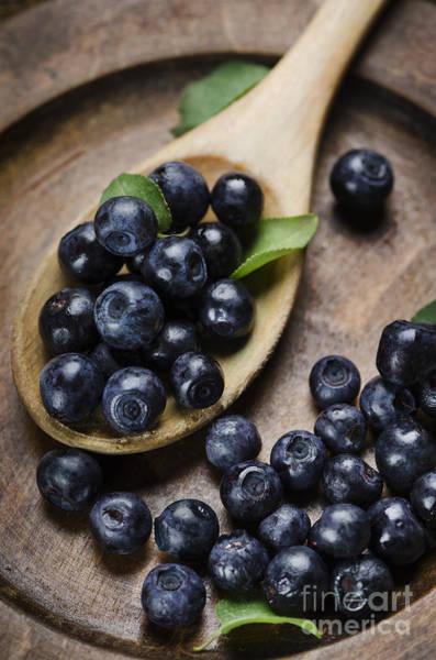 Menu Photograph - Blueberry by Jelena Jovanovic