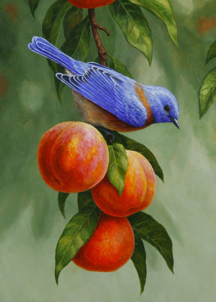 Fruit Trees Wall Art - Painting - Bluebird And Peaches Greeting Card 1 by Crista Forest