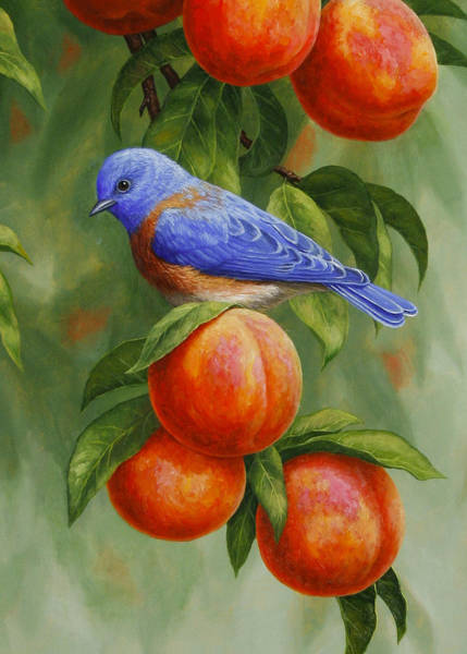 Fruit Trees Wall Art - Painting - Bluebird And Peaches Greeting Card 2 by Crista Forest