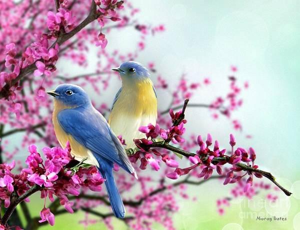 Mixed Media - Bluebirds by Morag Bates