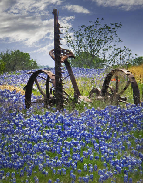 Plowing Photograph - Bluebonnets On The Farm by David and Carol Kelly