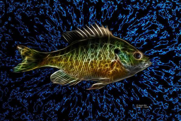 Digital Art - Bluegill - 9882 F by James Ahn