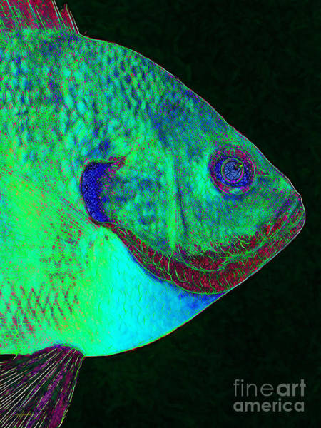 Delta Wing Photograph - Bluegill Fish P128 by Wingsdomain Art and Photography