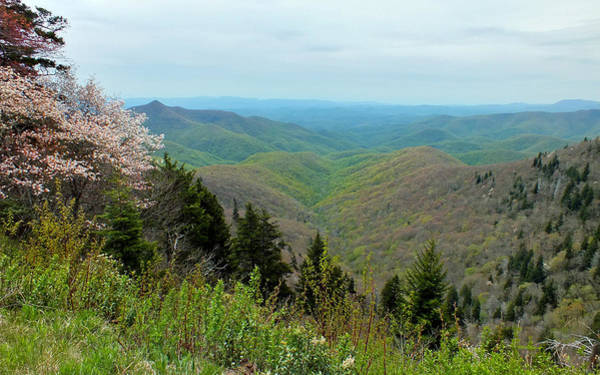 Photograph - Blueridge Parkway View At Mm 422 by Duane McCullough