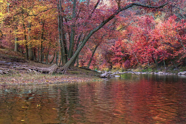 Photograph - Bluestone River by Mary Almond