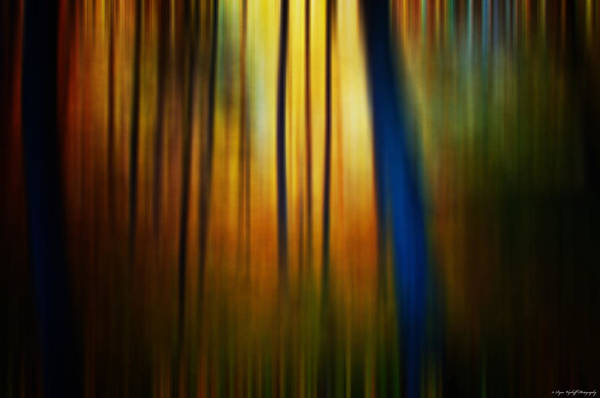 Photograph - Blurred Beauty by Ryan Wyckoff