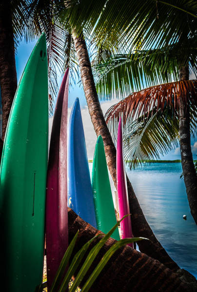 Wall Art - Photograph - Boards Of Surf by Karen Wiles