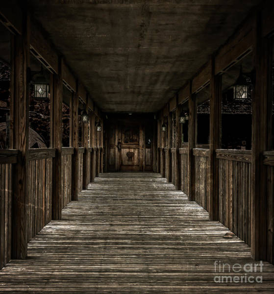 Photograph - Boardwalk by Larry McMahon