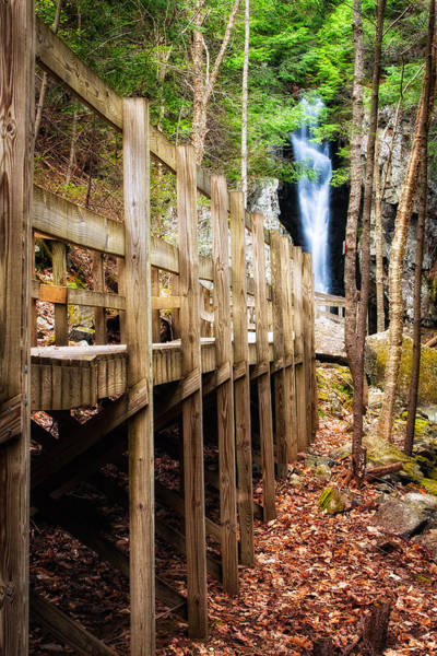 Shannon Falls Wall Art - Photograph - Boardwalk To Song  by Jeff Sinon