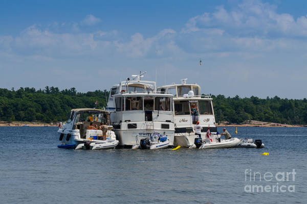 Photograph - Boating Buddies by Les Palenik