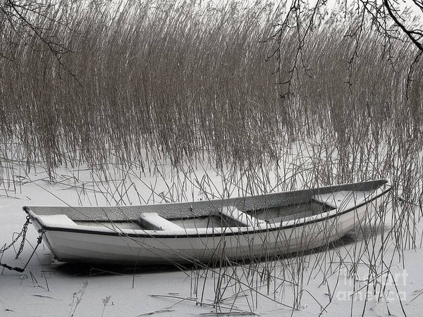 Icy Photograph - Boat In Winter by Lutz Baar