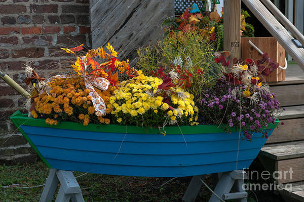 Photograph - Boat Of Flowers by Dale Powell
