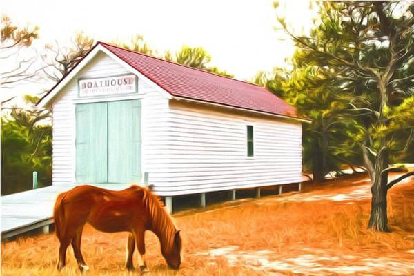 Photograph - Boathouse And A Pony by Alice Gipson