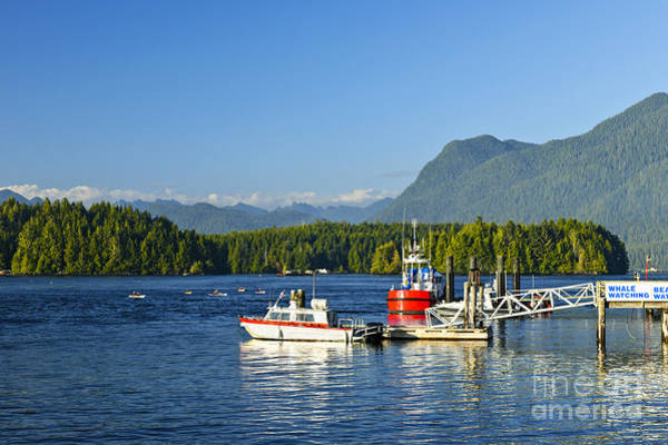 Wall Art - Photograph - Boats At Dock In Tofino by Elena Elisseeva
