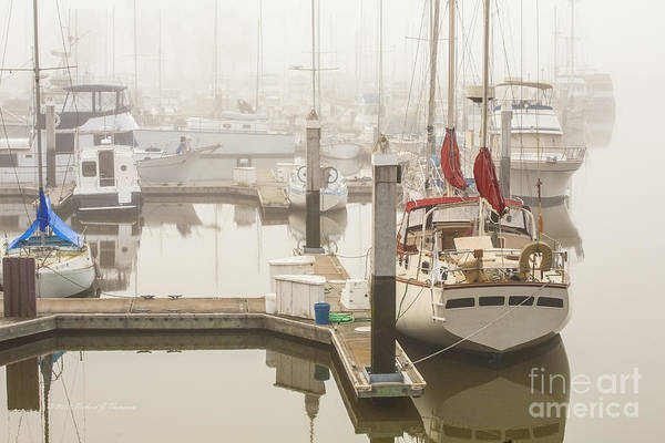 Photograph - Boats Docked In The Fog by Richard J Thompson