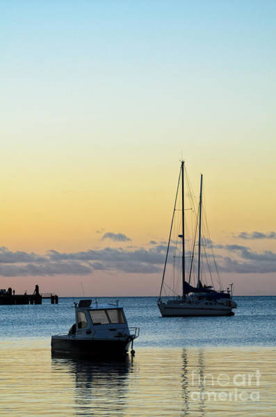 Photograph - Boats In The Early Evening by David Hill