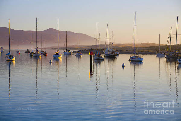 Photograph - Boats Mooring by Richard J Thompson
