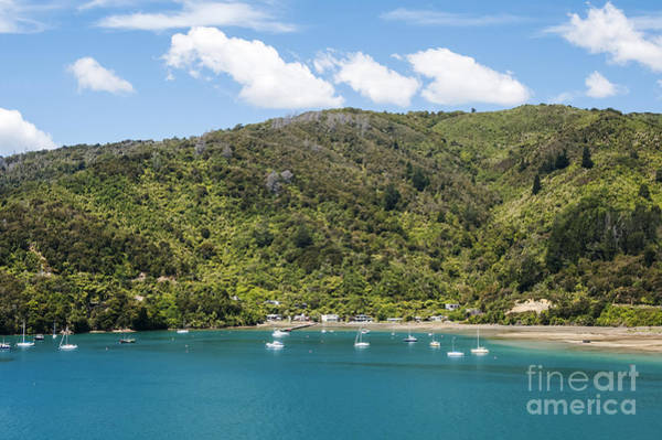 Queen Charlotte Sound Wall Art - Photograph - Boats On The Sound by Bob Phillips