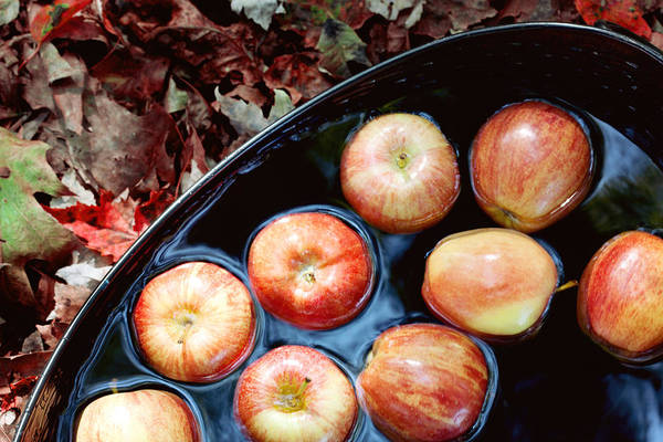 Fall Photograph - Bobbing For Apples by Kim Fearheiley
