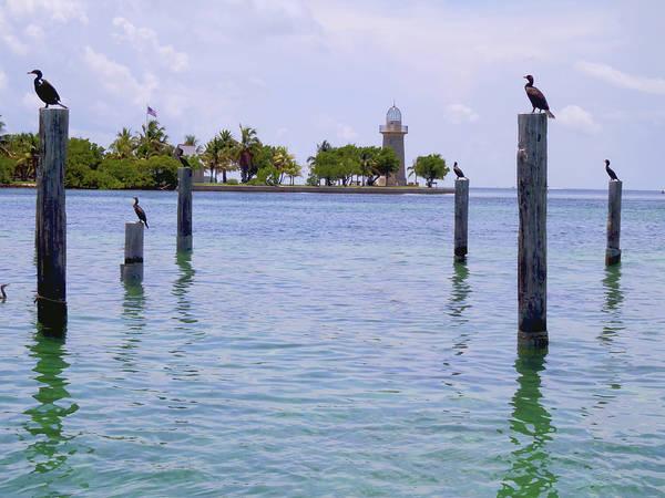 Ocean Grove Photograph - Boca Chita Docks by Carey Chen