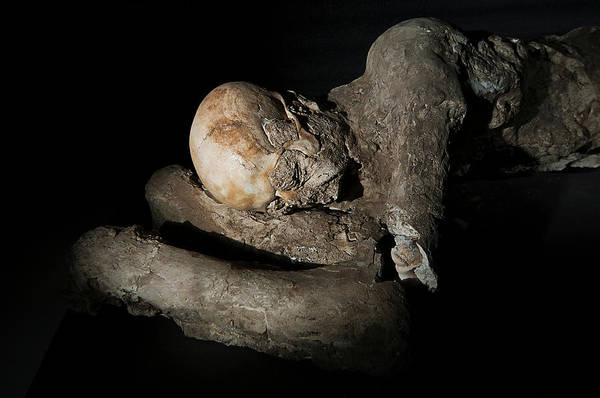 Pasquale Photograph - Body Cast Of A Victim Of The Pompeii Eruption by Pasquale Sorrentino/science Photo Library