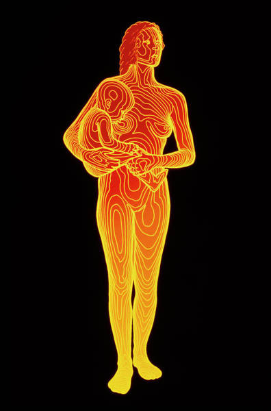 Contour Photograph - Body Contour Map Of Woman Holding Child by Dr Robin Williams/science Photo Library