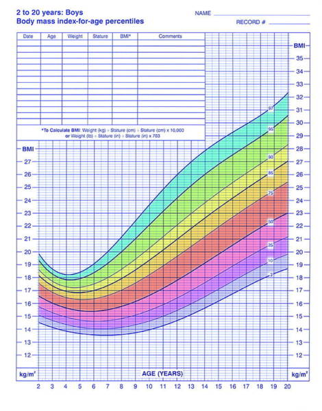 Comparative Wall Art - Photograph - Body Mass Index Chart by Cdc/science Photo Library
