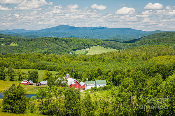Photograph - Bogie Mountain Summer by Susan Cole Kelly